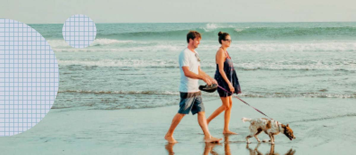 Man and woman walking dog on beach