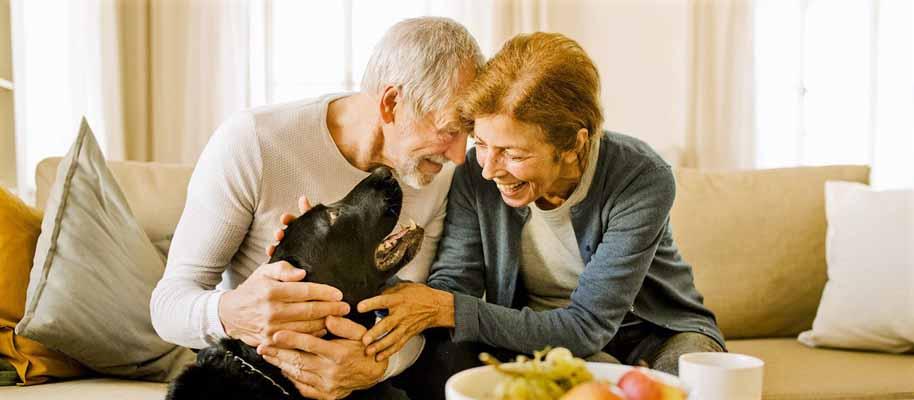 Senior couple hugging their dog